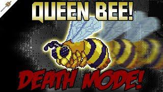 How to Beat The Queen Bee in Death Mode! ||Terraria Calamity Mod Boss  Guide||