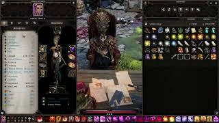 Divinity Original Sin 2 DE | Solo honour mode necromancer build