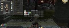 Скачать Final Fantasy XIV - Healer HUD and Macro tip