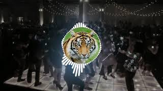 Sher Baja Tiger Dhun (Dhumal Dj Mix Mp 3 ) new 2018