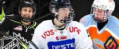 Скачать TOP 10 PROSPECTS FOR 2021 NHL DRAFT (March 2019