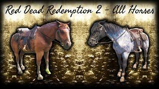 Red Dead Redemption 2 All Horses / All Horse Breeds Showcase