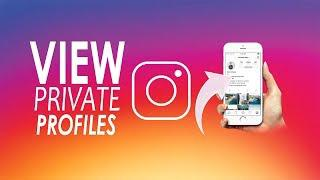 How To View A Private Instagram Account Without Following Online